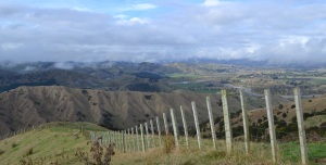 In the upper reaches of the Waipaoa 2013, looking out over the watershed.