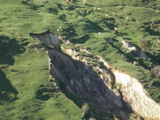 Example of a hillslope failure in the Waipaoa. 2007