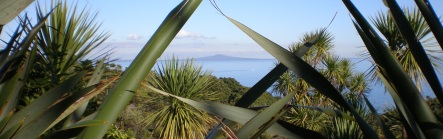 Looking at Rangitoto Island from the Tiritiri Matangi Sanctuary, 2007.
